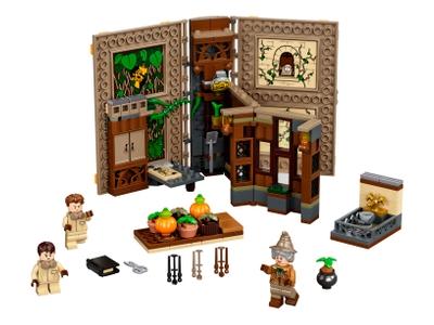 LEGO Hogwarts™ Moment: Herbology Class (76384)