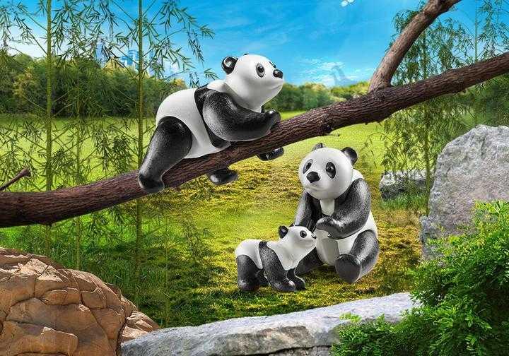 PLAYMOBIL 2 Panda's met baby (70353)